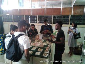 Visita de estudo ao Museu de Mineralogia e Geologia de Luanda da Universidade Agostinho Neto.